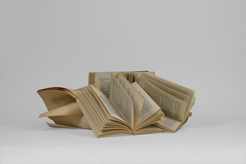 Photographie de Michel Rey prise de dessus Elle représente 5 livres usagés, jaunis et entrouverts. Ils sont agencés en équilibre instable, les feuilles entrouvertes et répartis horizontalement les uns sur les autres.