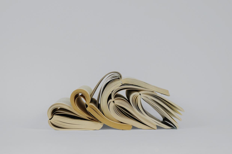 Photographie de Michel Rey prise de face Elle représente 5 livres usagés, jaunis et pliés en deux. Ils sont agencés en équilibre instable, les feuilles entrouvertes et couchés les uns sur les autres.